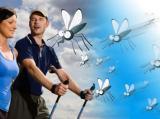 Wojna z komarami !